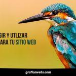 10 Tips fabulosos a la hora de elegir los colores para tu página web